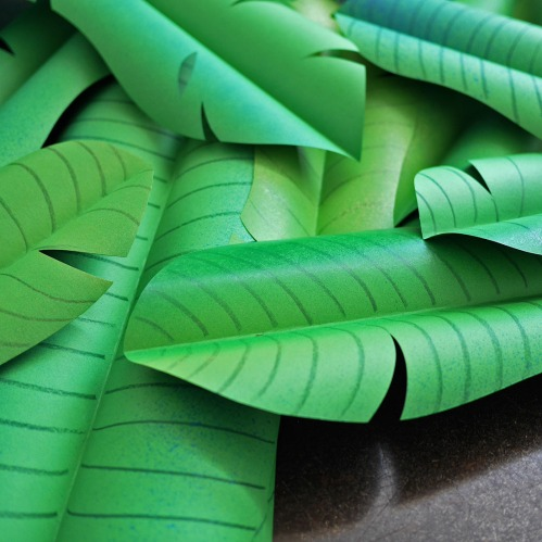 paper banana leaves, green screen paper
